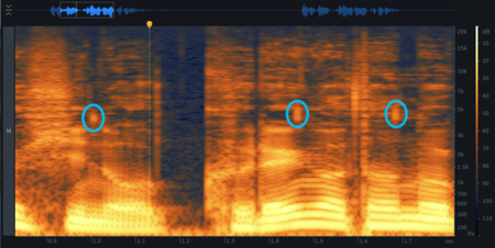 iZotope RX リップノイズの箇所